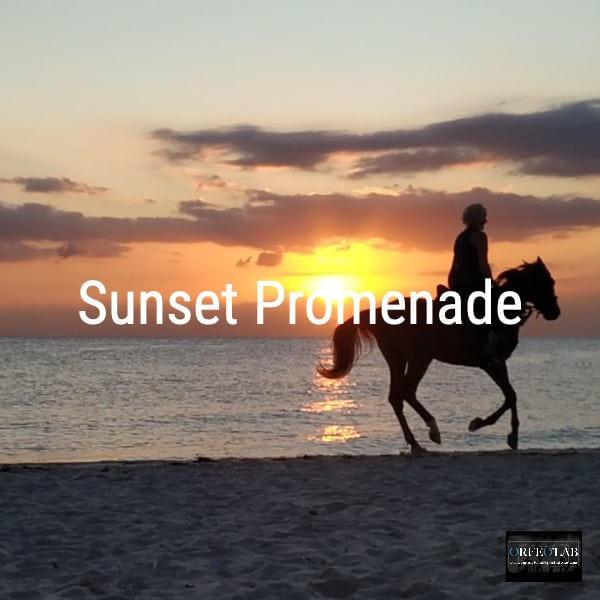 Sunset Promenade playlist photo cover spotify orfeolab distribution promotion