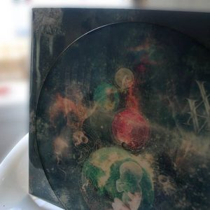Picture Disc- Embryogenesis